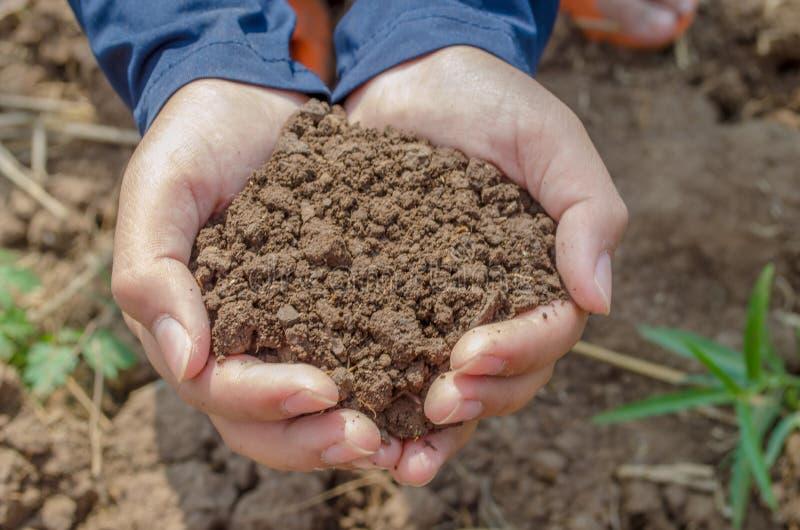 Handfull Rich Brown Soil royaltyfri bild