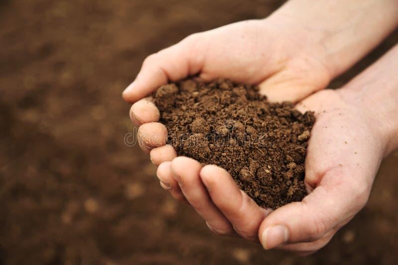 Handfull Rich Brown Soil arkivbild