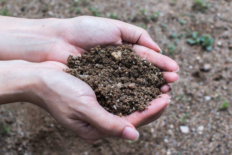 Handfull Rich Soil royaltyfri fotografi