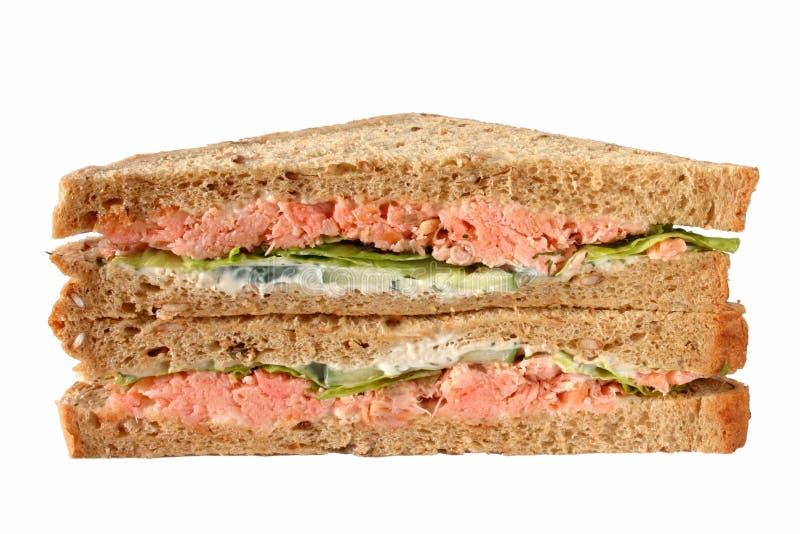 Handgemachte Bratenlachssandwiche. lizenzfreie stockfotografie