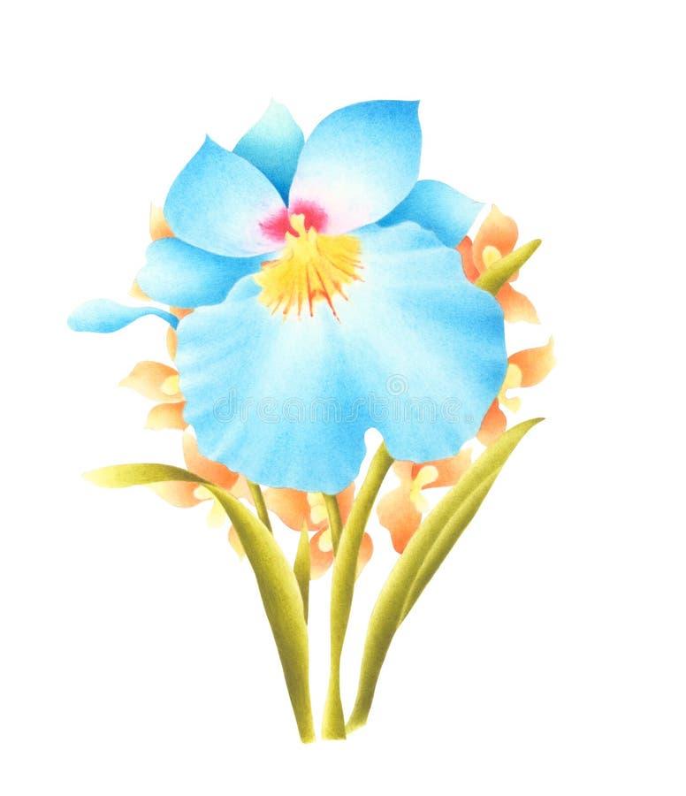 Handgemalte Aquarell-Blume Aquarellorchideenblumenstrauß lokalisiert auf weißem Hintergrund Wenn der Beschneidungspfad eingeschlo stockfotografie