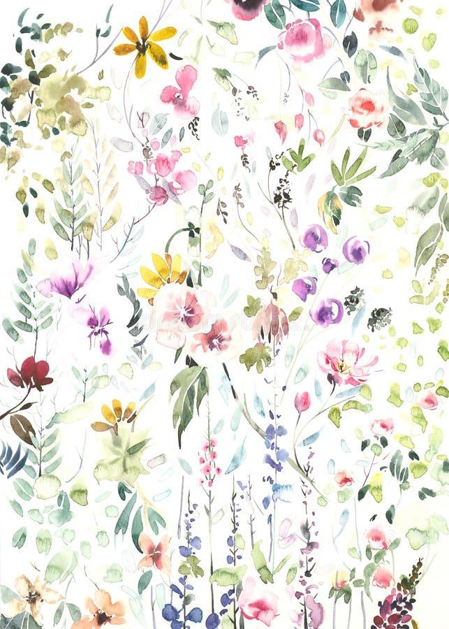 Handgemalte Aquarellblumen und -anlagen auf weißem Hintergrund lizenzfreie stockbilder