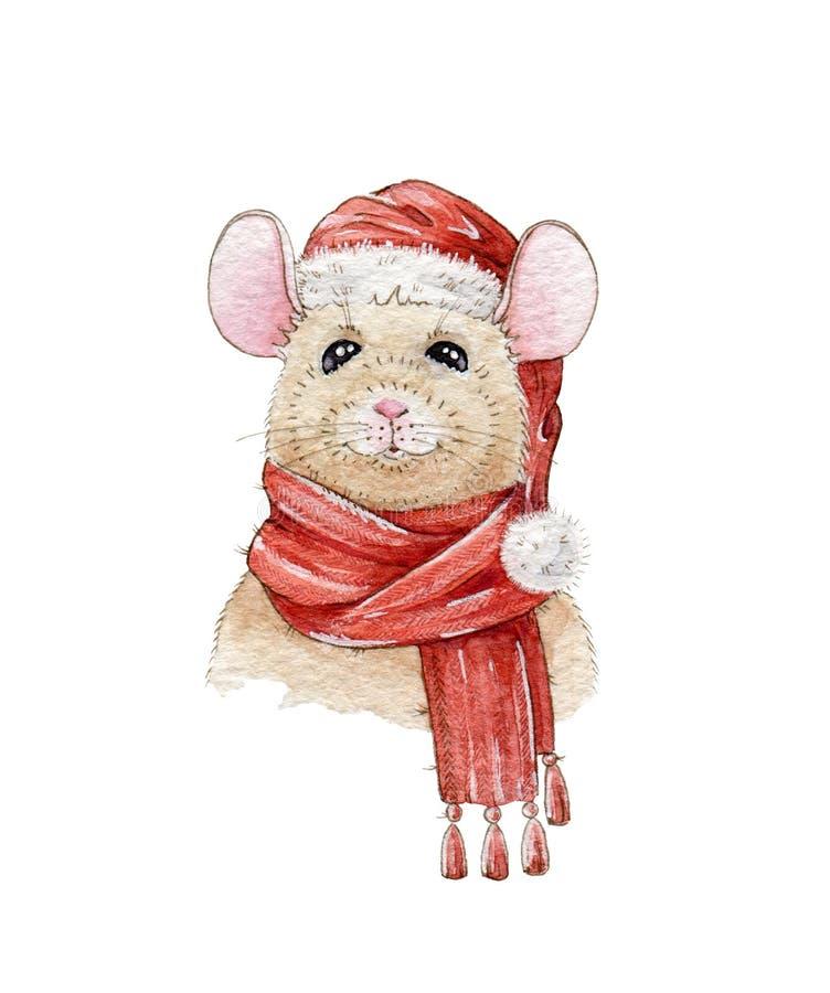 Handgemalte Illustration des Weihnachtsaquarells einer netten Maus in einem roten Hut und in einem warmen Schal Ein chinesisches  stock abbildung