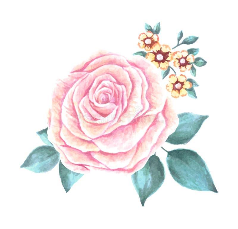 Handgemalter Aquarell-Blumen-Vektor Vektoraquarellblumen Aquarell Rose Vector stock abbildung