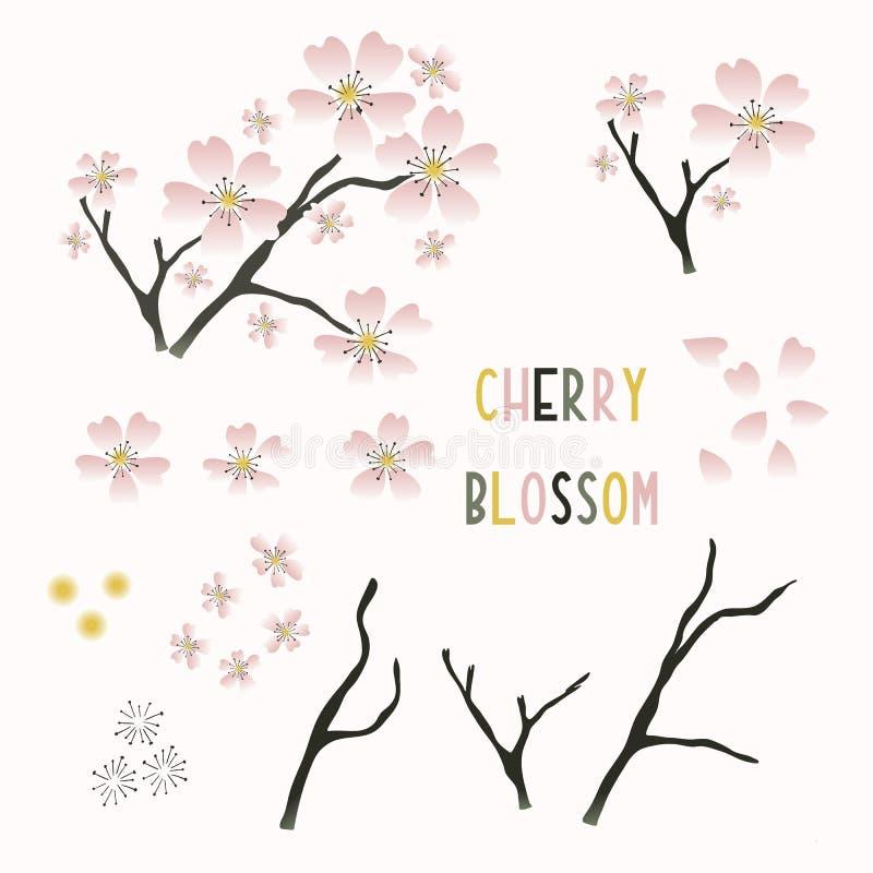 Handgezeichnete Kirschblütensammlung Set von modernen wagara japanese Frühjahrssymbole Icons Grüngras vektor abbildung