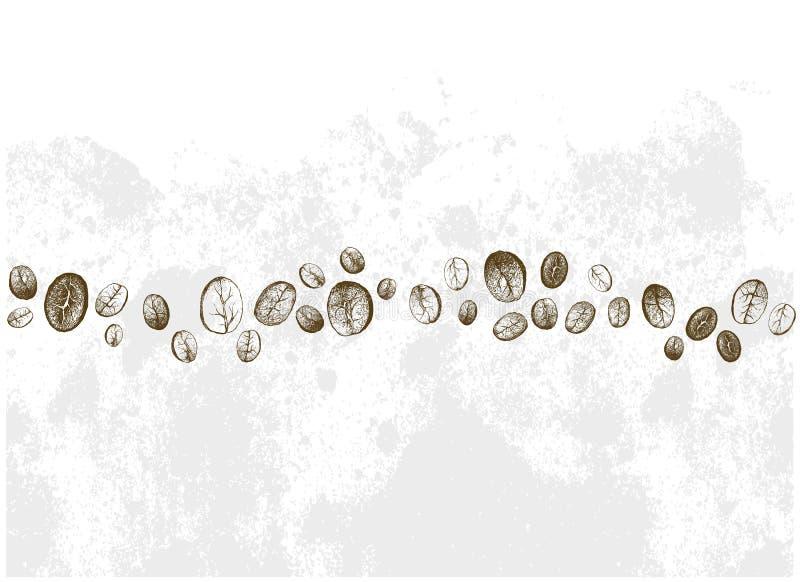 Handgezogene Reihe von verschiedenen Kaffeebohnen lizenzfreie abbildung
