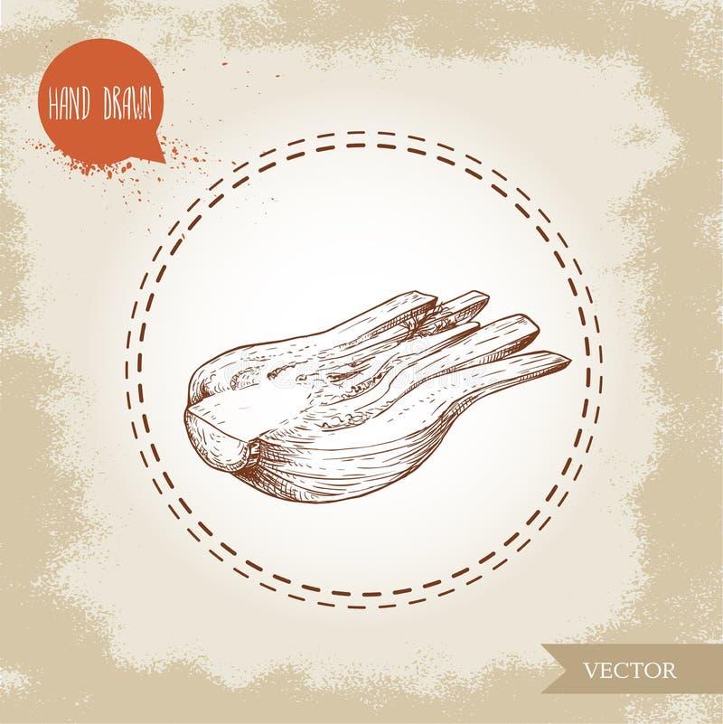 Handgezogene Skizzen-Fenchelbirne Hälfteschnitt der würzigen Wurzelanlage mit Blättern Kraut-, Gewürz- und Würzvektorillustration lizenzfreie abbildung