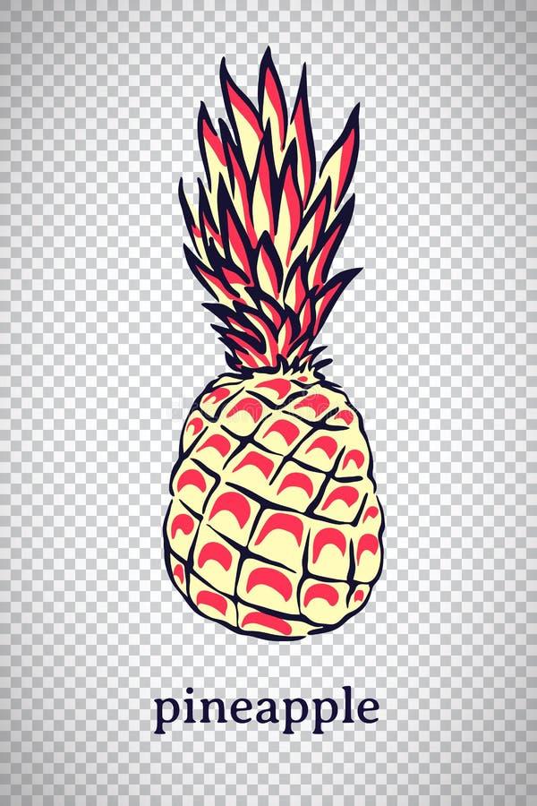 Handgezogene stilisierte Ananas Vektorananasfrucht lokalisiert auf transparentem Hintergrund Grafische Illustration für Logo ode stock abbildung