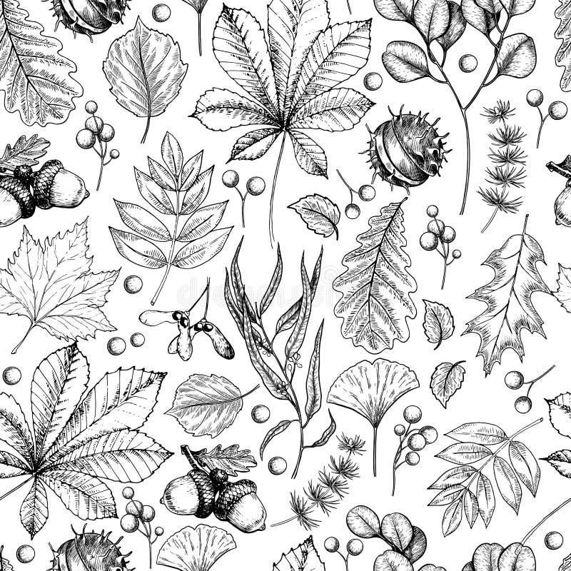 Handgezogenes Herbstblatt. Vektor-nahtloses Muster von Baumblättern. Herbstwaldfollikel. Ahorn, Eiche, Kastanie, Birke, Eiche lizenzfreie abbildung
