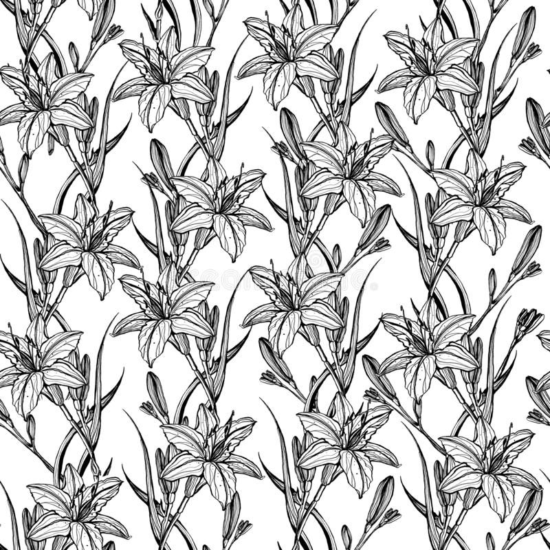 Handgezogenes nahtloses Muster mit Lilienblumen stockfoto