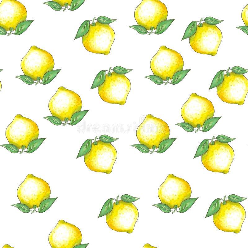 Handgezogenes nahtloses Muster mit Tintenskizze und gelben Zitronen und Blättern des Aquarells auf weißem Hintergrund lizenzfreies stockfoto