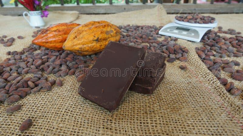Handgjorda chokladkvarter med torkade kakaobönor och kakaofrukter royaltyfri fotografi