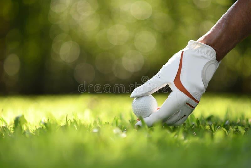 Handhållgolfboll med utslagsplatsen på golfbana royaltyfri foto