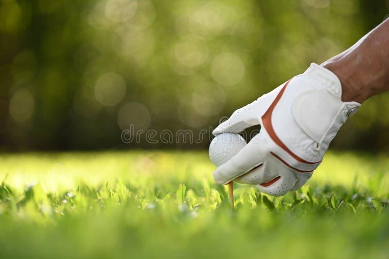 Handhållgolfboll med utslagsplatsen på golfbana royaltyfria foton