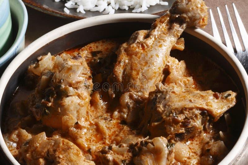 Handi Murg咖喱用从印度的米 免版税图库摄影