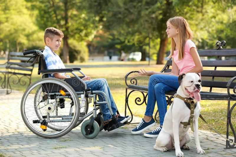 Handicapped boy with his sister and dog resting in park royalty free stock images