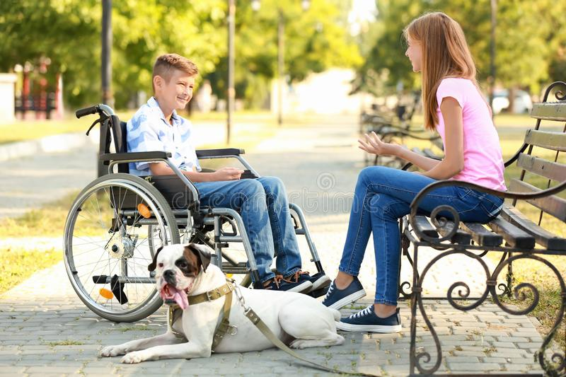 Handicapped boy with his sister and dog resting in park stock images