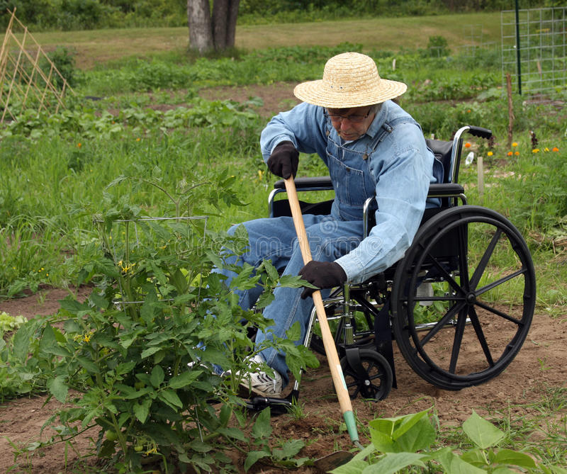 Download Handicapped Farmer Stock Images - Image: 14814294