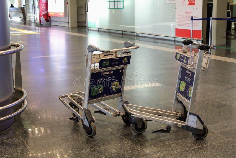Handkärror för bagage på den Vnukovo för internationell flygplats Moskva - Juli 2017 arkivfoto