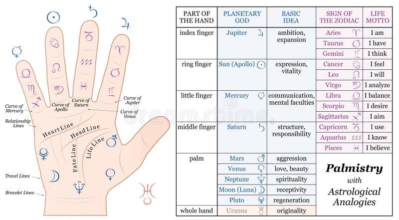 Handlesekunst-Astrologie-grundlegendes Analogie-Diagramm lizenzfreie abbildung