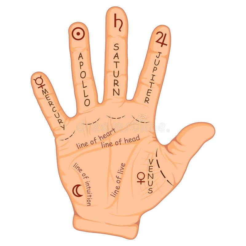 Handlesekunst- oder Handlesekunsthand mit Zeichen der Planeten und der Sternzeichen Handlesekunstkarte auf offener Palme Weissagu vektor abbildung