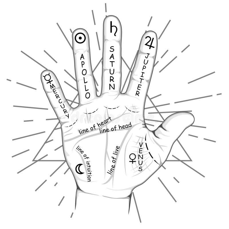 Handlijnkunde of chirologiehand met tekens van de planeten en dierenriemtekens Handlijnkundekaart op open palm Waarzegging en vector illustratie