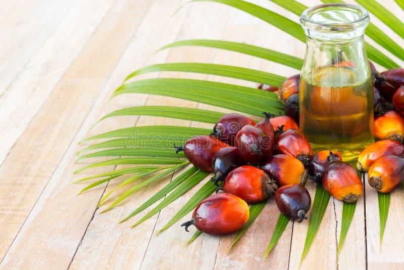 Handlowa olej palmowy kultywacja Ponieważ olej palmowy zawiera więcej sa zdjęcie royalty free