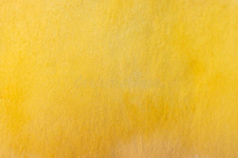 Handmålad gul vattenfärgsbakgrund royaltyfria foton