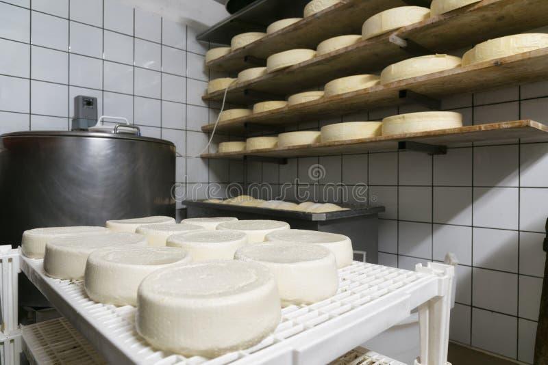 Handmade итальянская продукция сыра в ферме горы стоковые изображения
