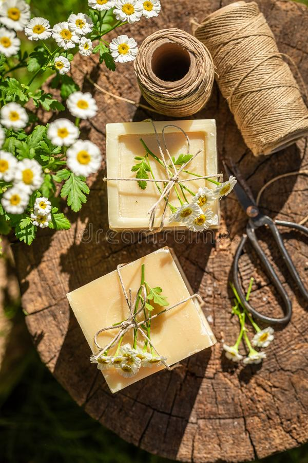 Handmade and aromatic chamomile soap made of fresh ingredients royalty free stock photo
