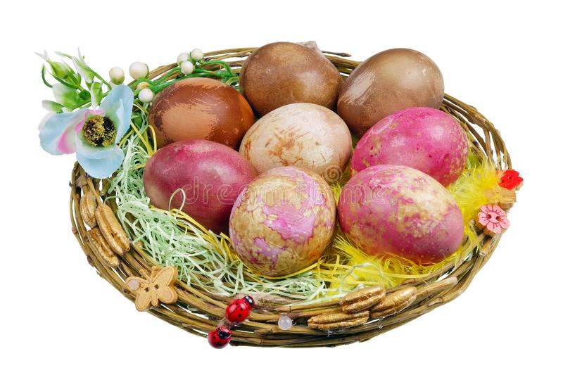 Handmade Easter nest with rural chicken bio eggs which are painted with natural dyes - beet, cabbage, onion isolated. Handmade Easter nest with rural chicken bio stock image