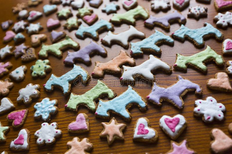 Handmade homemade colorful cookies in shape of dogs, hearts, flowers and stars royalty free stock image