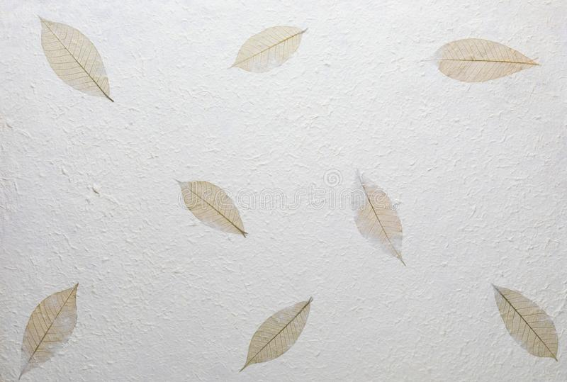 Handmade paper texture with recycled materials royalty free stock photo