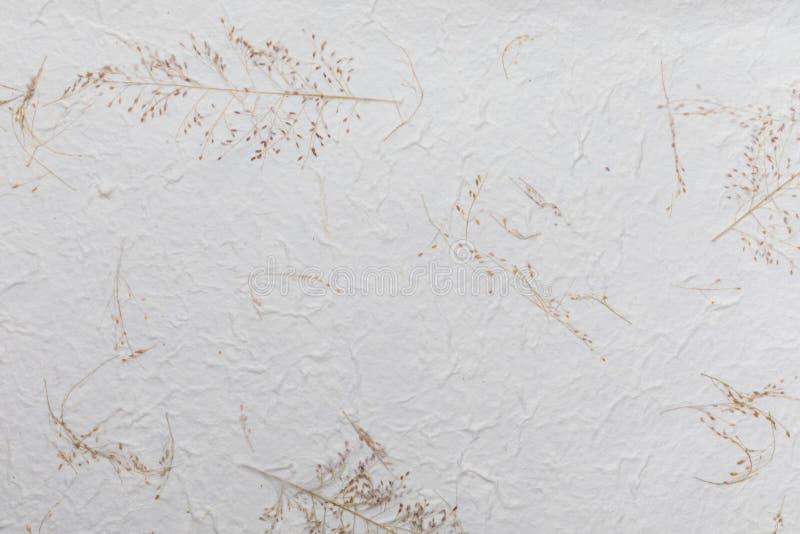 Handmade papieru tekstura z jarzynowymi włóknami lubi słomę royalty ilustracja
