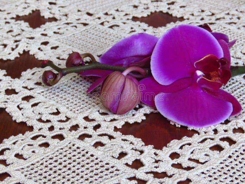 Handmade stołowy płótno w szydełkowym Rocznika koronkowy tablecloth fotografia royalty free