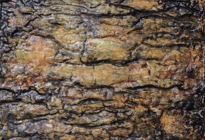 Handmade tło tekstura pomarańcze, kolor żółty i czerń, zdjęcie stock