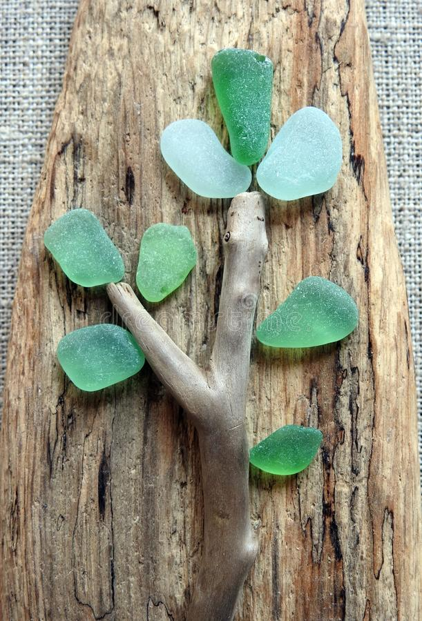Tree made using sea glass and sea wood, Lithuania stock image