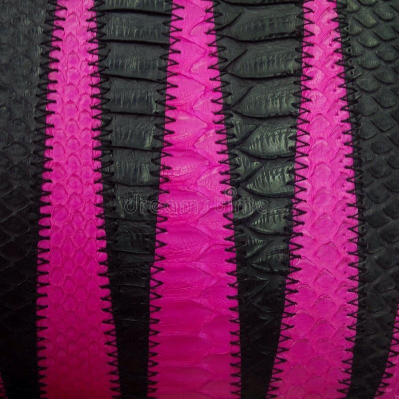 Handmade Wallet from Snake Skin royalty free stock image