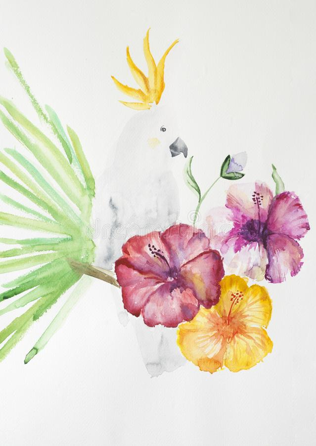 Handmade watercolor painting of parrot stock image