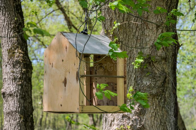 Handmade wooden bird feeder hanging on the tree.  stock image