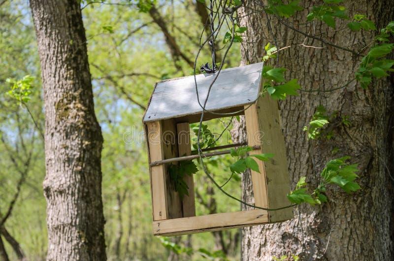 Handmade wooden bird feeder hanging on the tree.  royalty free stock photo