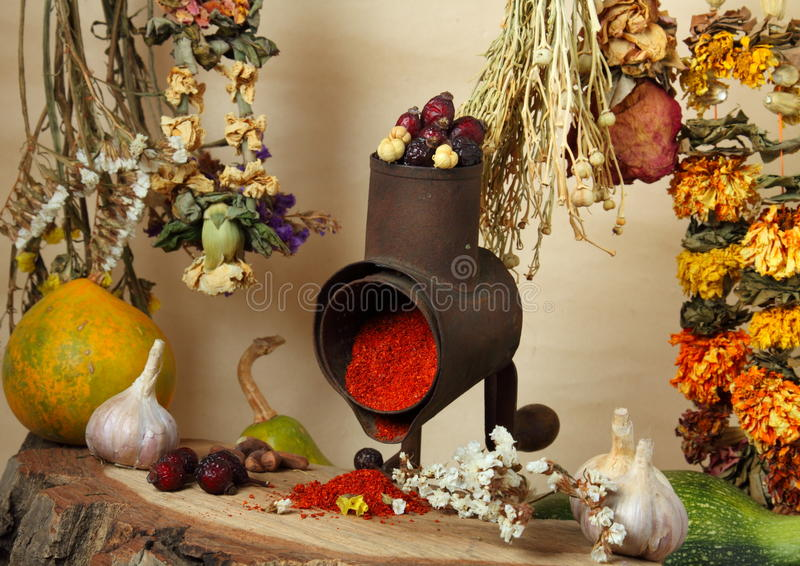 Handmill, Spice And Dry Flowers Royalty Free Stock Photo