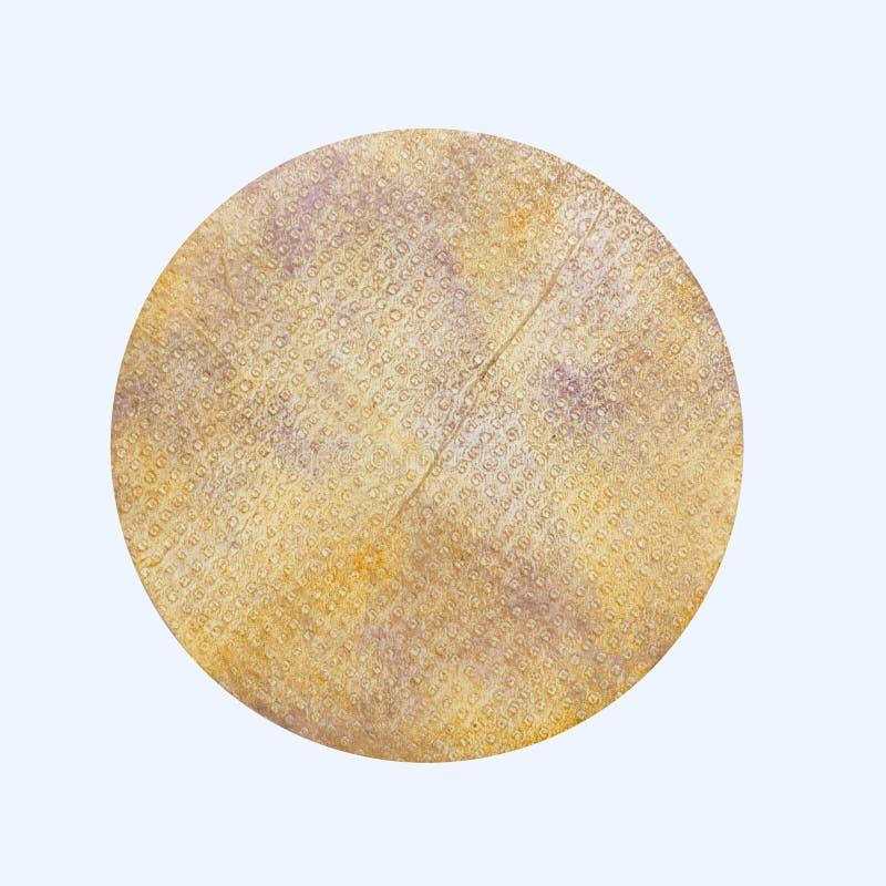 Handpainted Grungepapper i ellipsformiga Shape som isoleras på vit B arkivfoto
