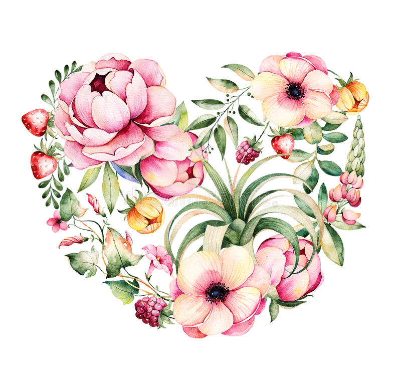 Handpainted illustration.Watercolor heart with peony,field bindweed,branches,lupin,air plant,strawberry stock illustration