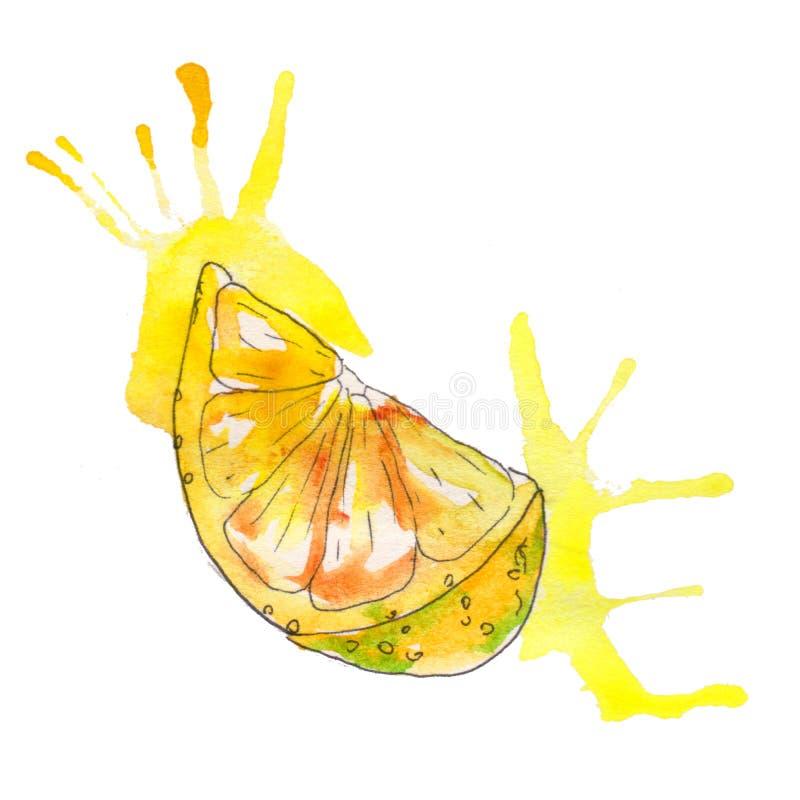 Handpainted saftig citron för vattenfärg som isoleras på vit bakgrund royaltyfri illustrationer