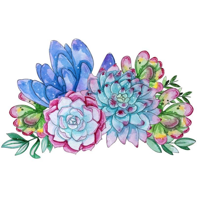 Handpainted suckulent växtsammansättning för vattenfärg stock illustrationer