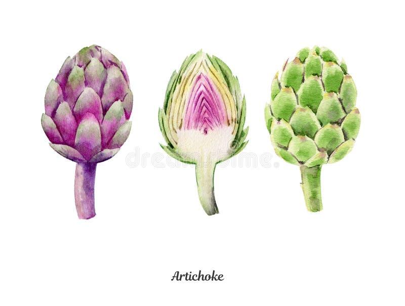 Handpainted vattenfärgaffisch med kronärtskockor royaltyfri illustrationer