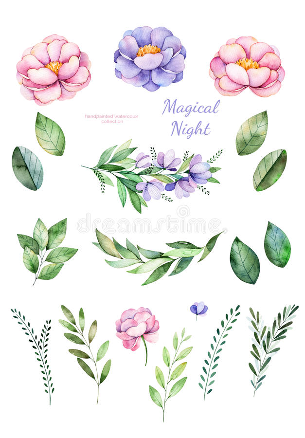 Handpainted watercolor flowers, leaves. vector illustration