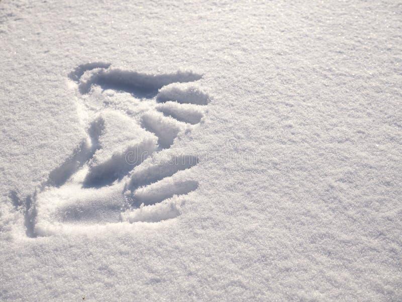 Handprint στο χιόνι Χέρια σφραγίδων στο χιόνι στοκ εικόνα
