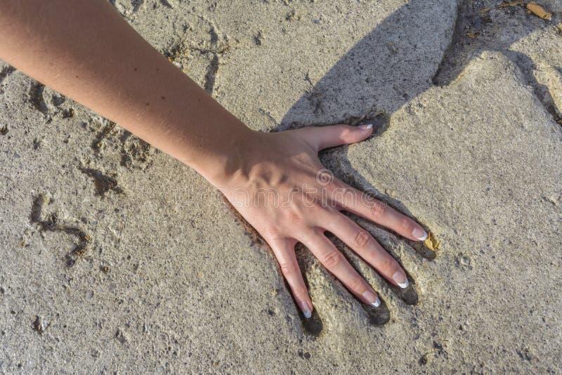 Handprint en ciment photo libre de droits